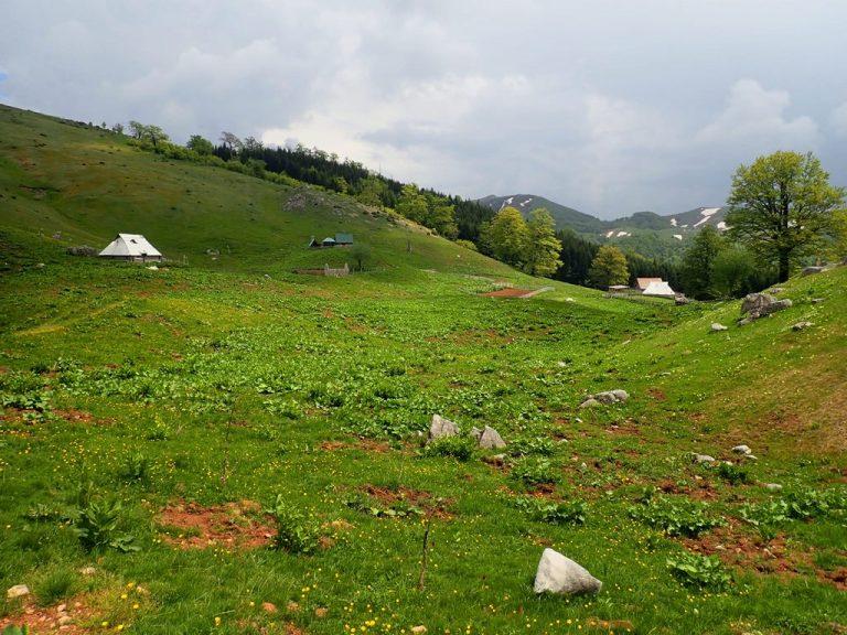 Stari Katun sheperd settlement