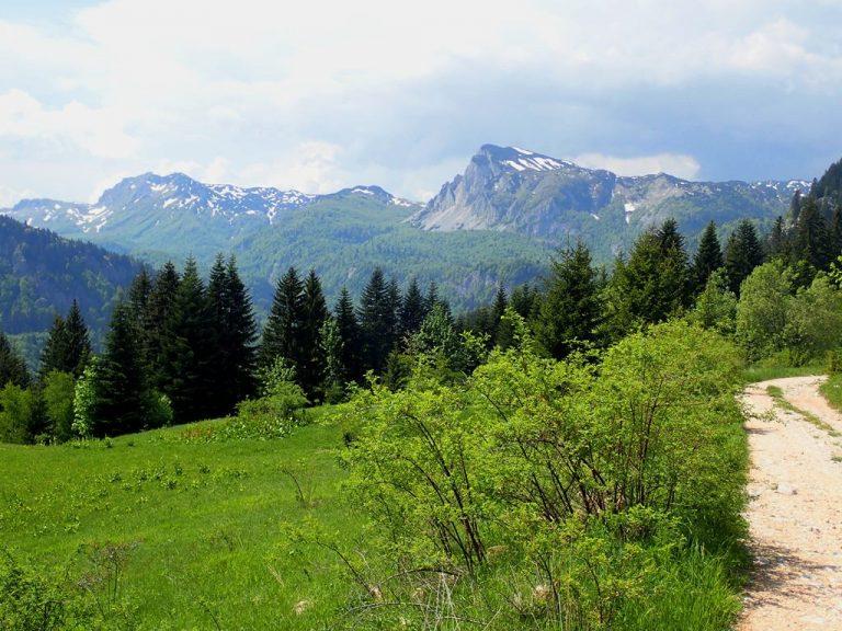 View to Zelengora mountain