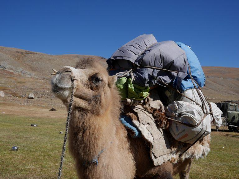First tourist caravan after 10 days.