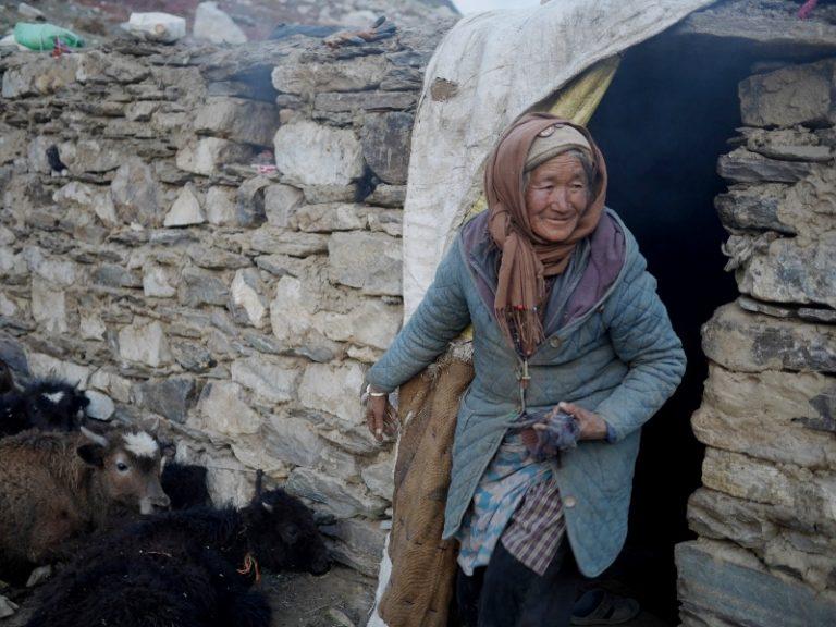 Old Zanskari women, she managed all yaks in upper valley :)